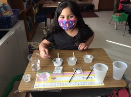 Science Experiments in Grade 2