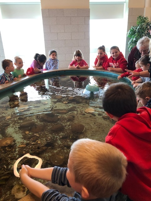 D.W. Merritt students exploring the touch tank at DEI